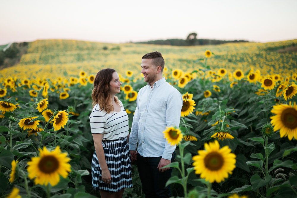 Pope-Farms-Sunflower-Engagement-Session-Madison-Wisconsin_015.jpg