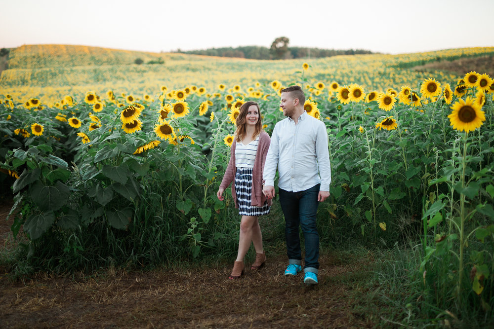 Pope-Farms-Sunflower-Engagement-Session-Madison-Wisconsin_022.jpg