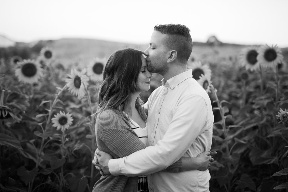 Pope-Farms-Sunflower-Engagement-Session-Madison-Wisconsin_026.jpg
