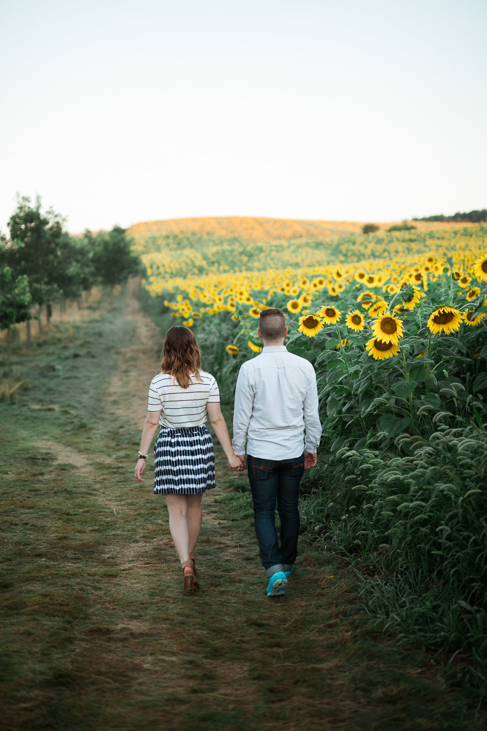 Pope-Farms-Sunflower-Engagement-Session-Madison-Wisconsin_029.jpg