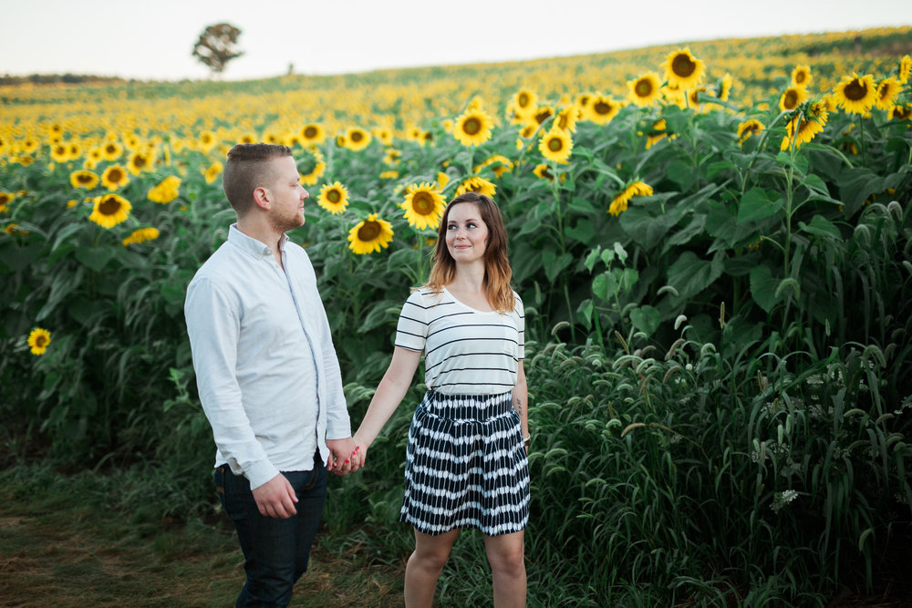 Pope-Farms-Sunflower-Engagement-Session-Madison-Wisconsin_031.jpg