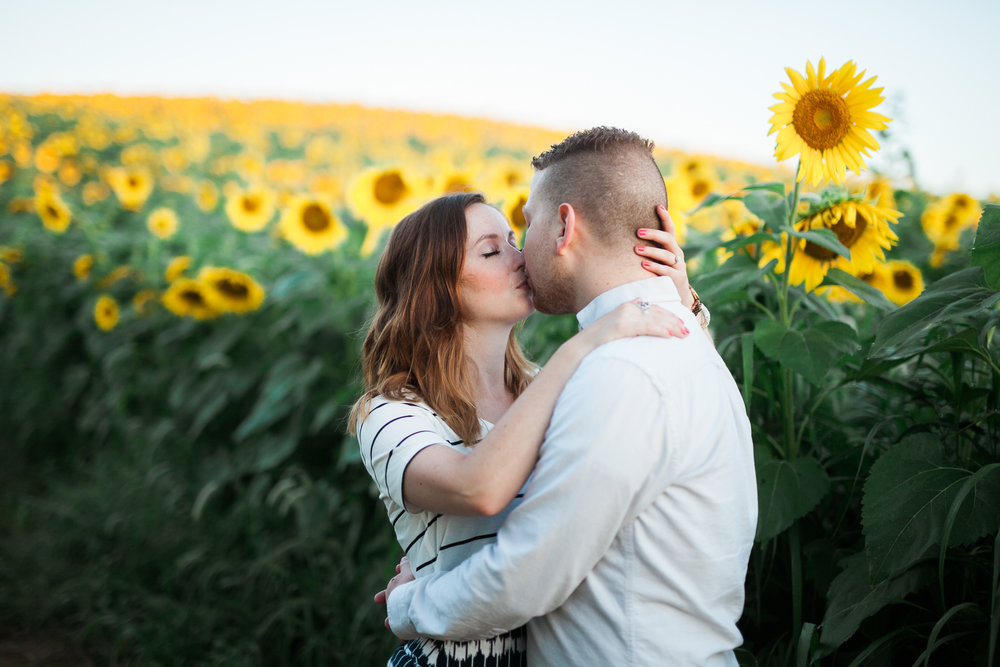Pope-Farms-Sunflower-Engagement-Session-Madison-Wisconsin_035.jpg