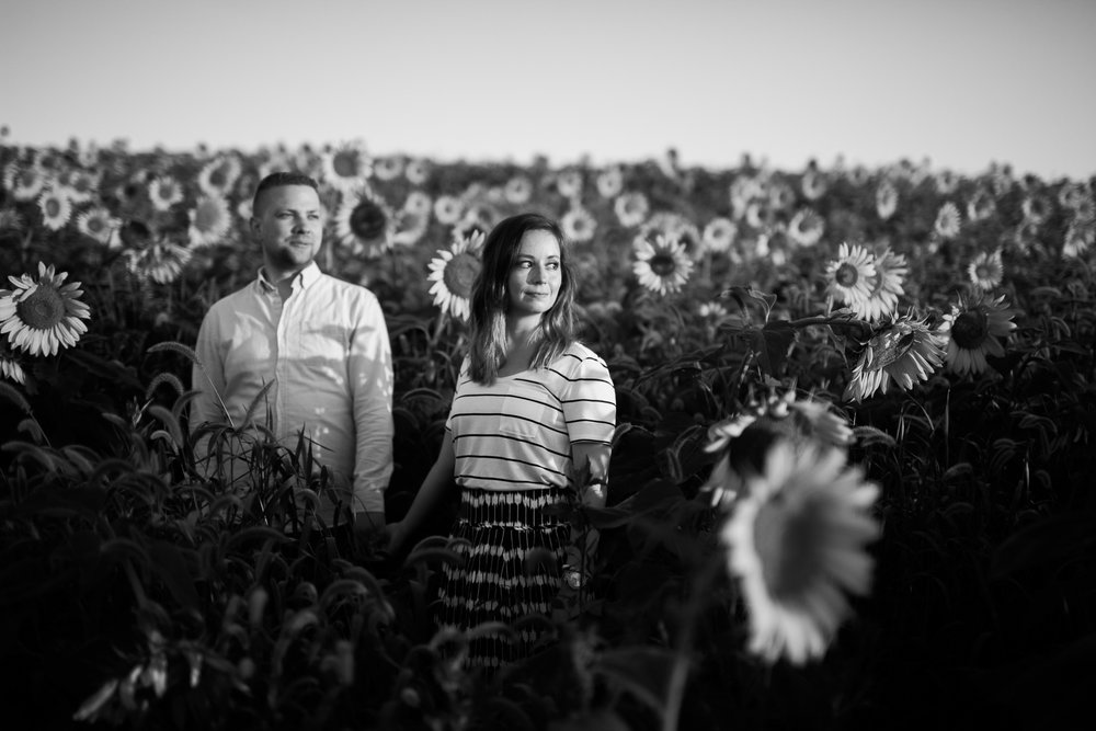Pope-Farms-Sunflower-Engagement-Session-Madison-Wisconsin_037.jpg