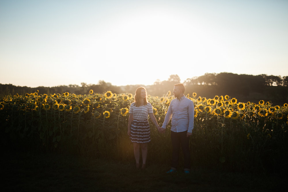 Pope-Farms-Sunflower-Engagement-Session-Madison-Wisconsin_039.jpg