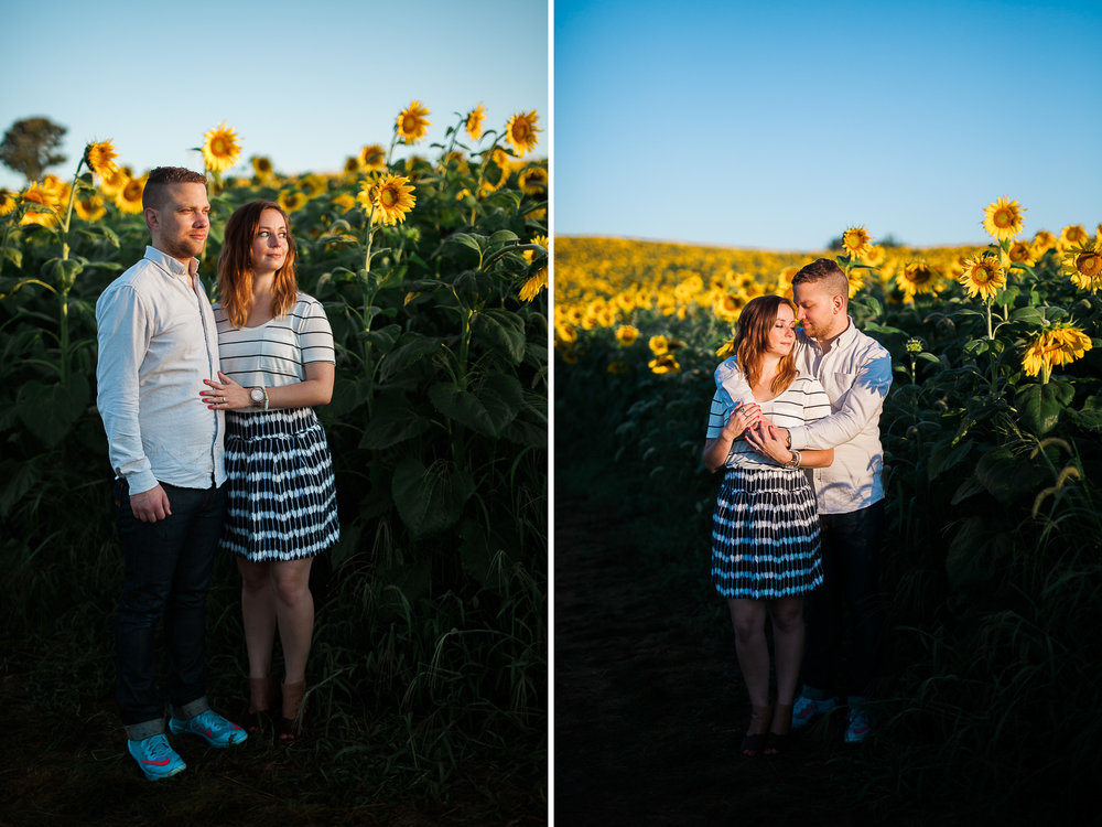 Pope-Farms-Sunflower-Engagement-Session-Madison-Wisconsin_043.jpg