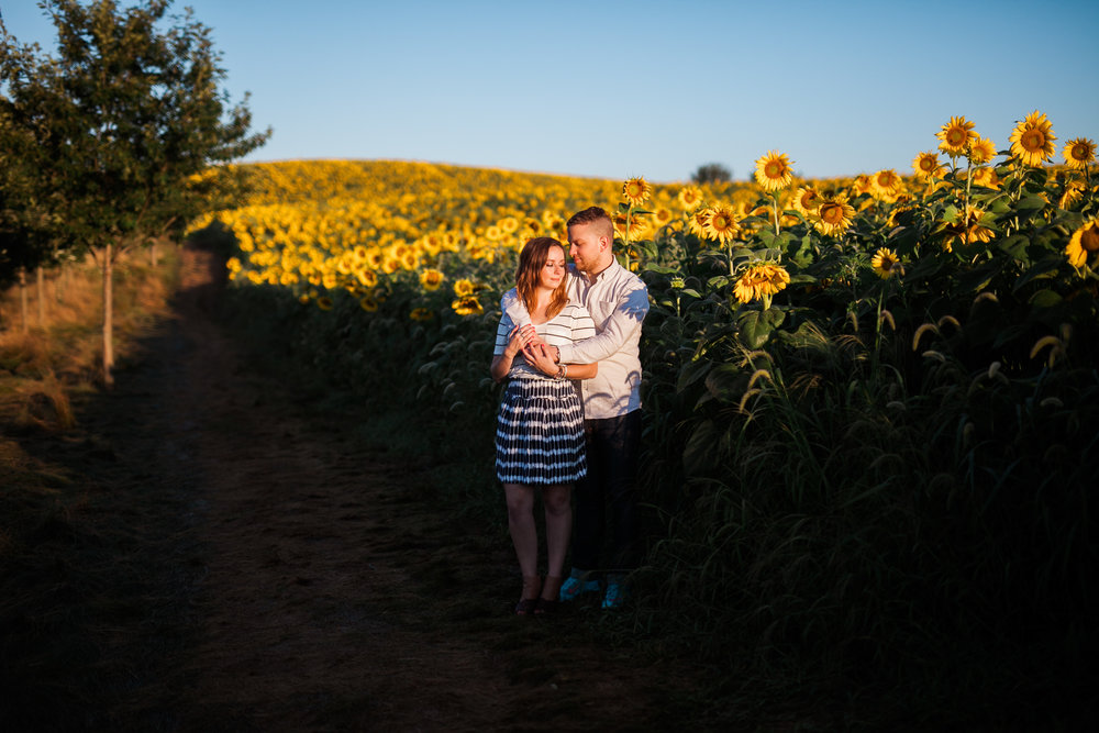 Pope-Farms-Sunflower-Engagement-Session-Madison-Wisconsin_044.jpg
