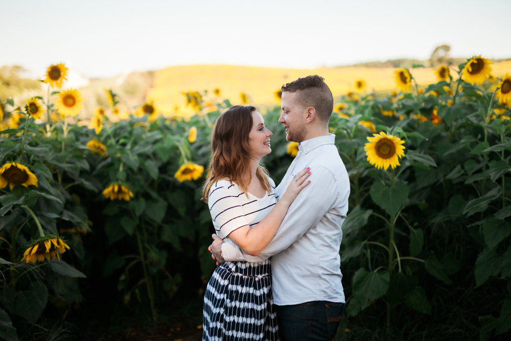 Pope-Farms-Sunflower-Engagement-Session-Madison-Wisconsin_046.jpg