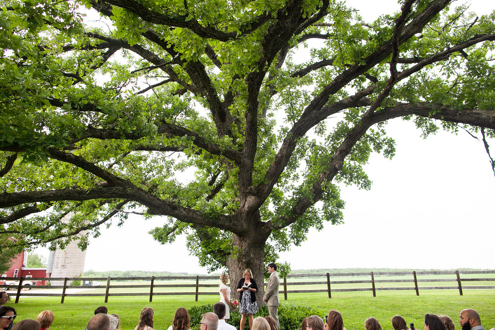 Sugarland-Wisconsin-barn-summer-wedding_083.jpg