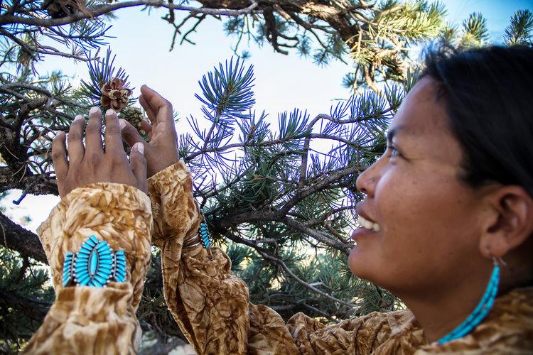 Baya Navajo.jpg
