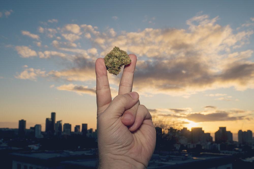 peace-bud.jpg