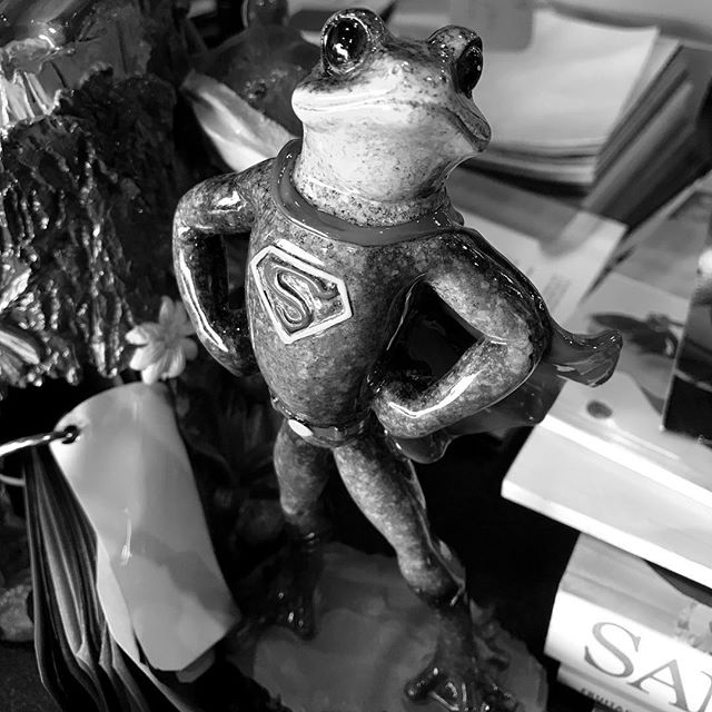 Super Frog. Shoot @bigfrogshorewood today!  #wylerstudios #videographer #smallbusiness #smallbusinessowner  #bigfrog