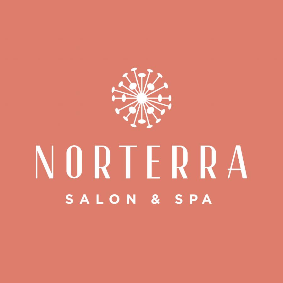 Norterra_Logo_Services.png