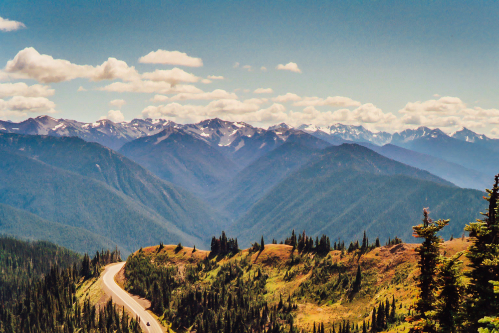 Olympic Mountains and Road.jpg