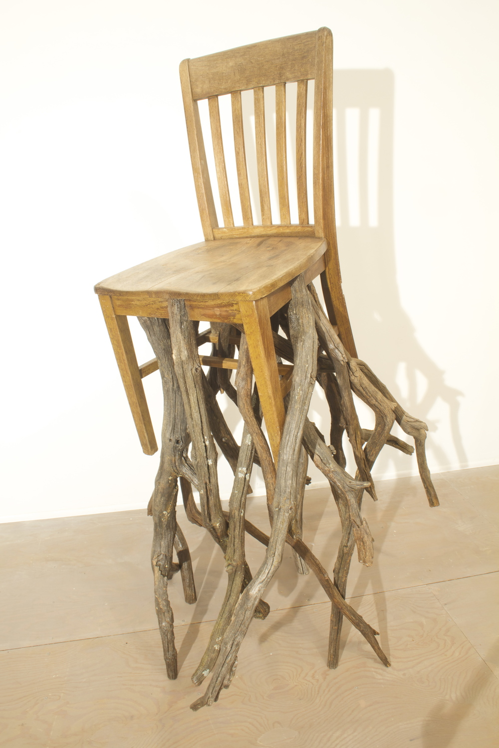 Oak, Chair