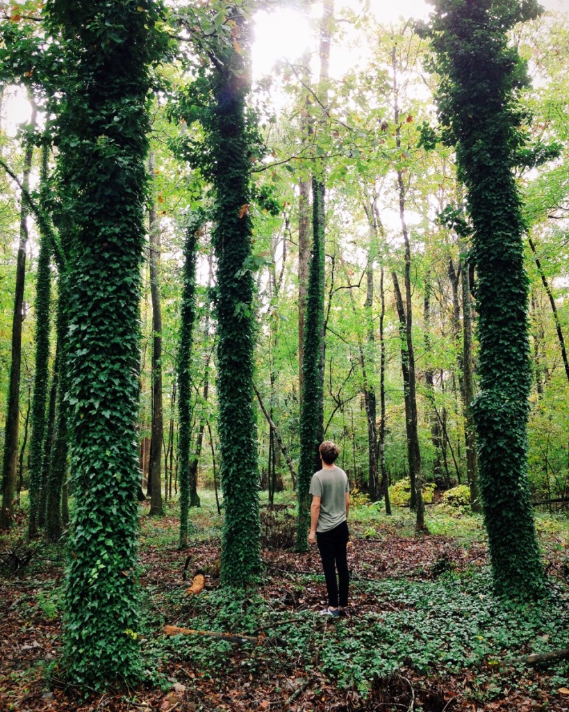 Casey with the trees in North Carolina