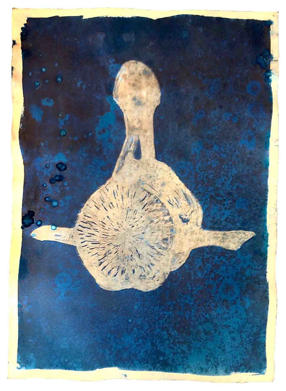 "Vertebrae Balaena    cyanotype print, edition of 12  30"" x 22""  2015  (available)"