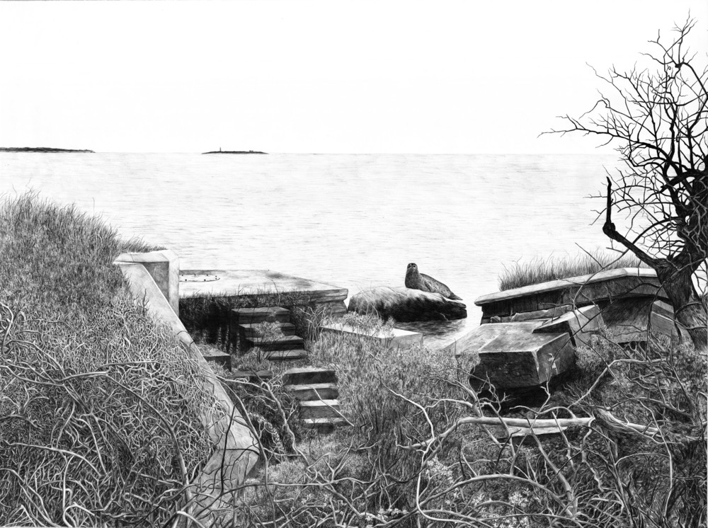 "Plum Island (from Forbidden Island project)    ballpoint on paper  33.5"" x 45""  2016  (available)"