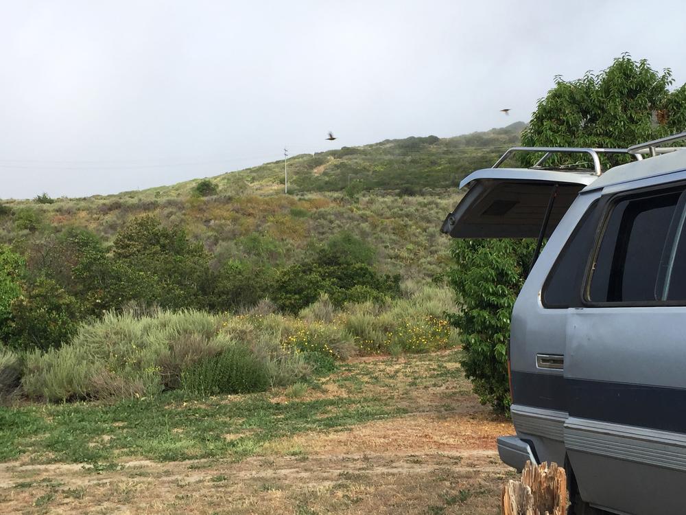 Van Life in San Clemente