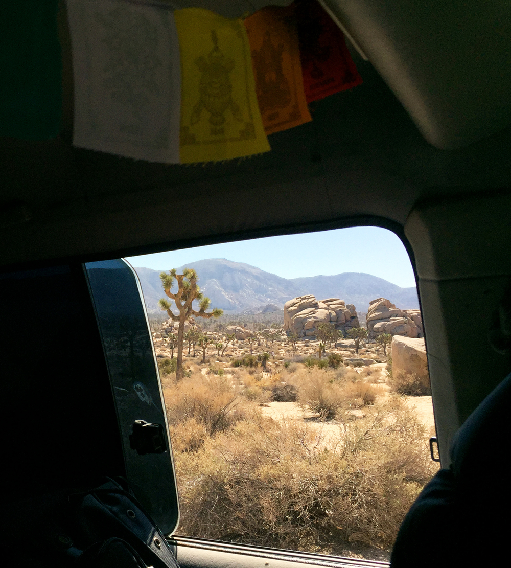 Van life in Joshua Tree
