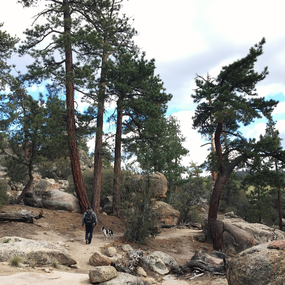 Holcomb Valley in Big Bear, CA
