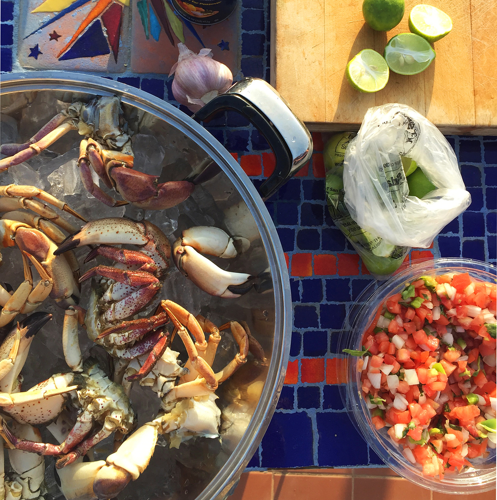 Fresh Seafood Dinner in Las Gaviotas, Mexico