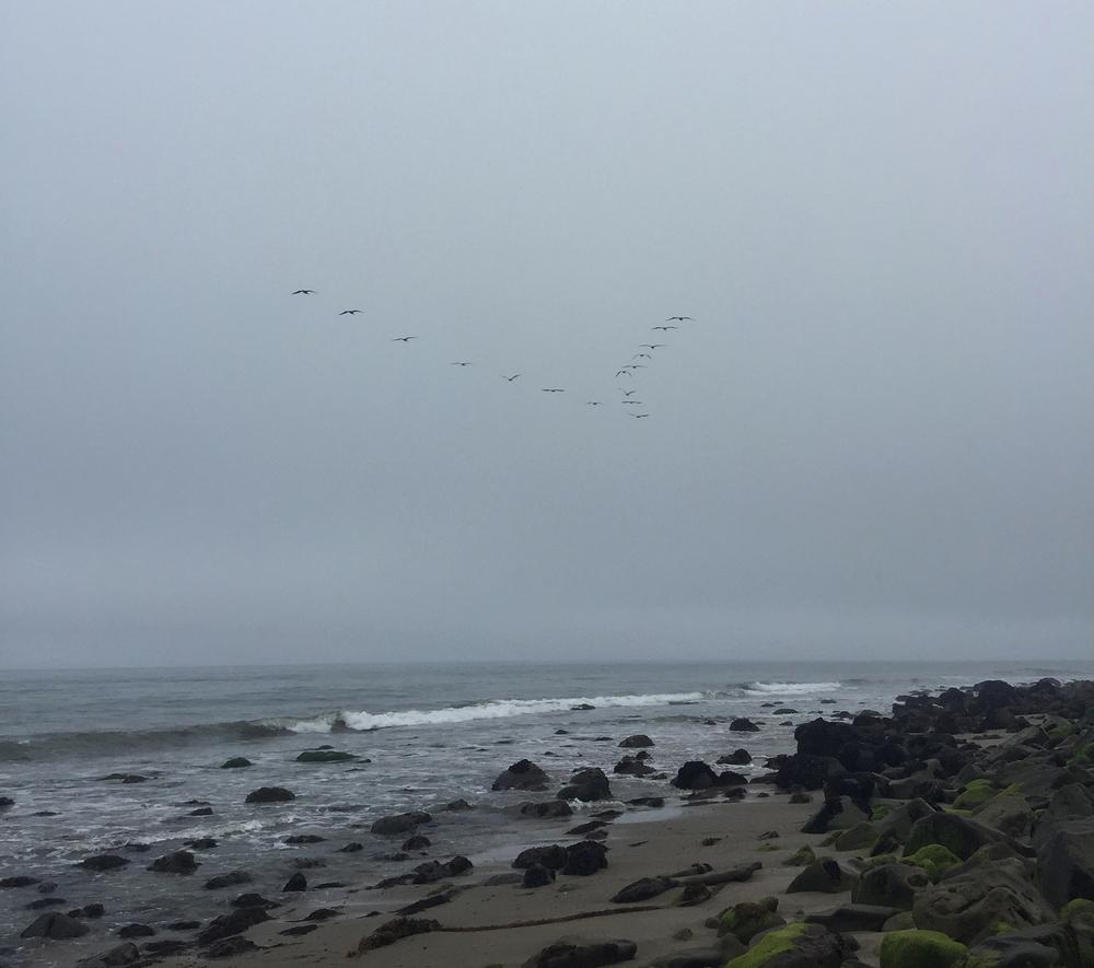 Ventura, CA