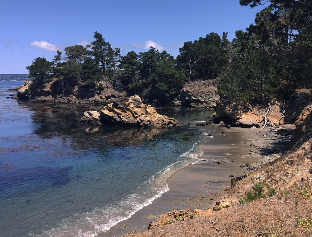 Point Lobos State Reserve in Carmel, CA