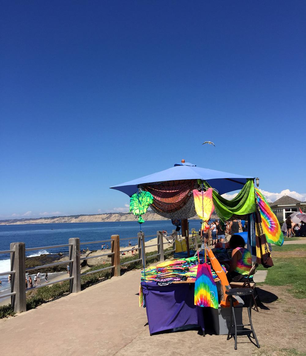 Shell Beach in La Jolla