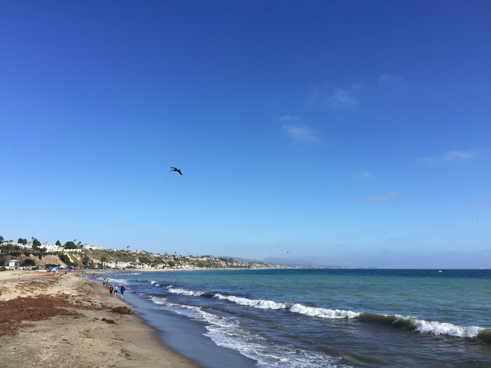 Doheny Beach, Dana Point