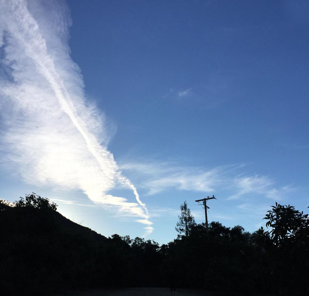 Horn Canyon Trail, Ojai