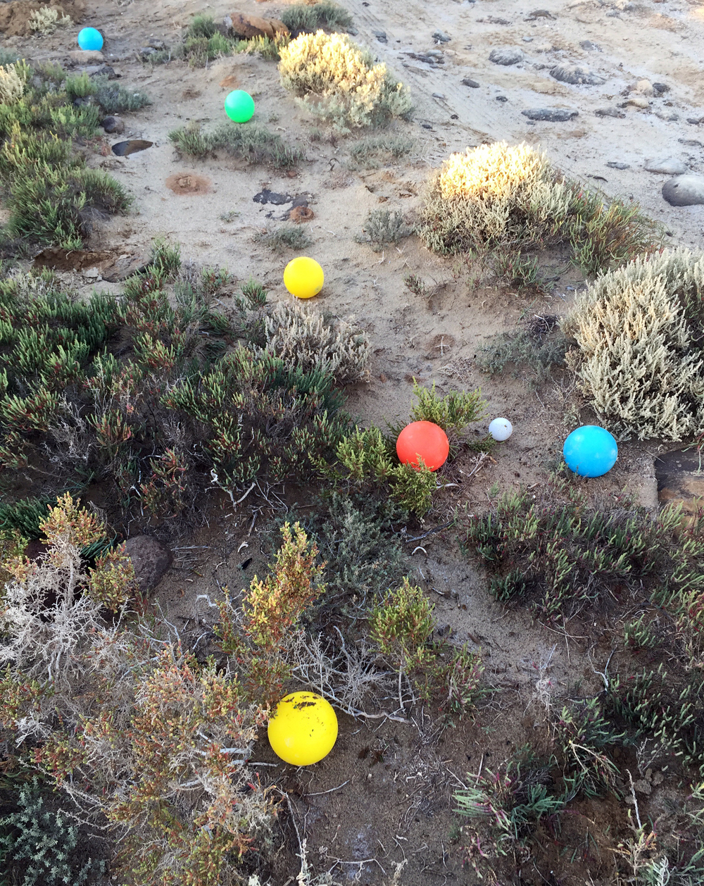 """Bocce Ball at """"The Wall"""" in Baja Norte, Mexico"""