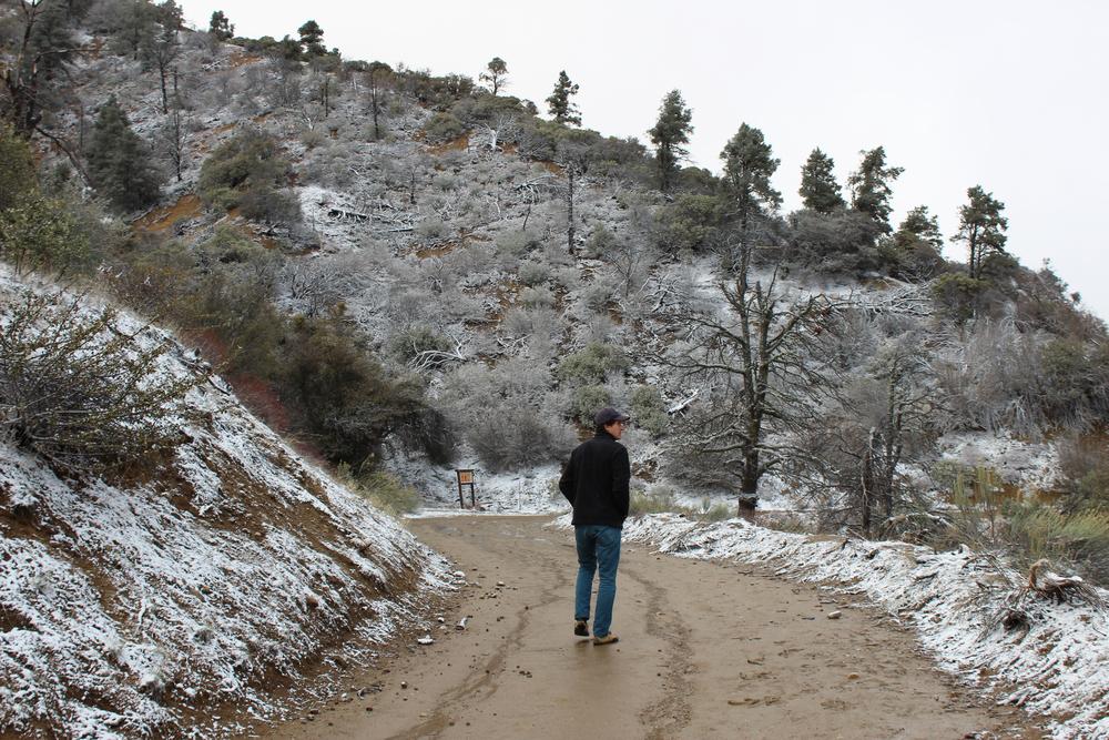 Snow in Ojai