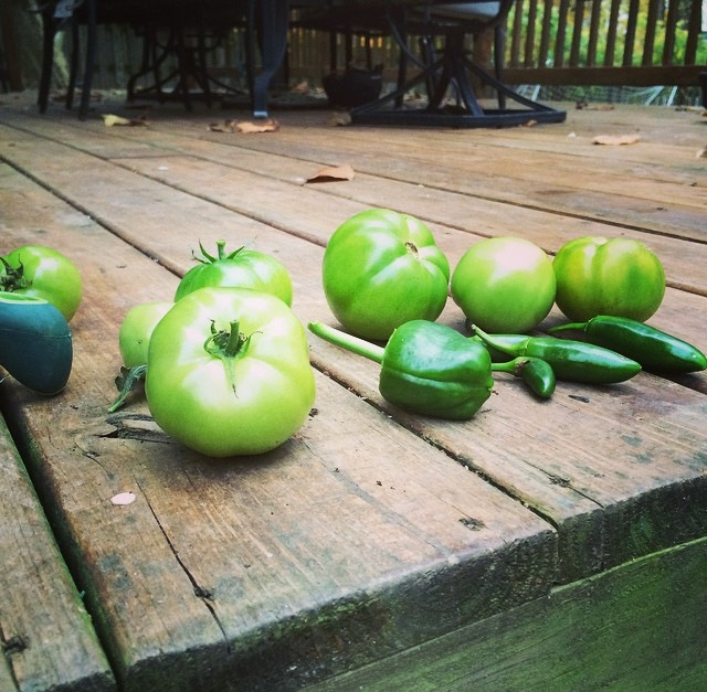 some harvest from last year, including very blah jalapeño's !