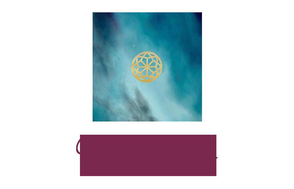 Nona - Final Website Logo Transparent.png