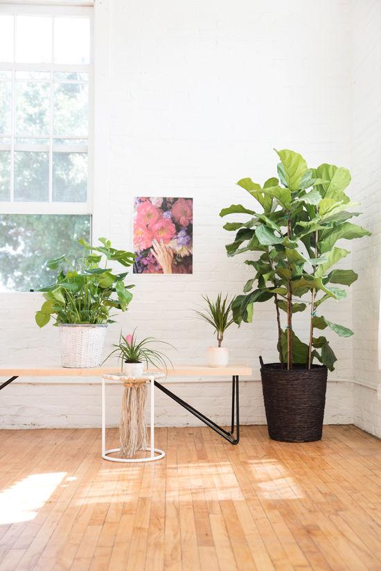 Yeah Furniture Bench | Photo via Designlovefest