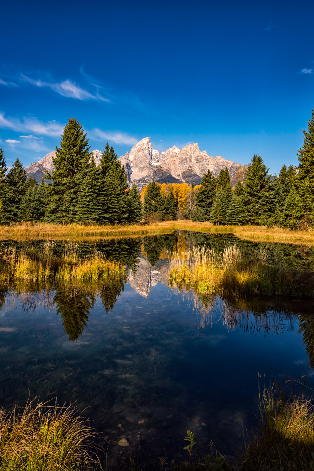Schwabachers Landing Reflection