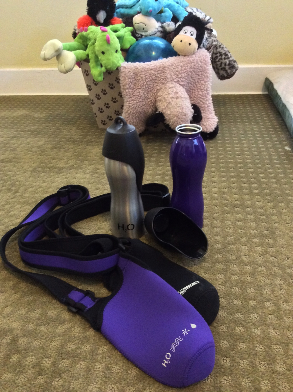 H20K9 Dog Water Bottles with NEOSLING holders