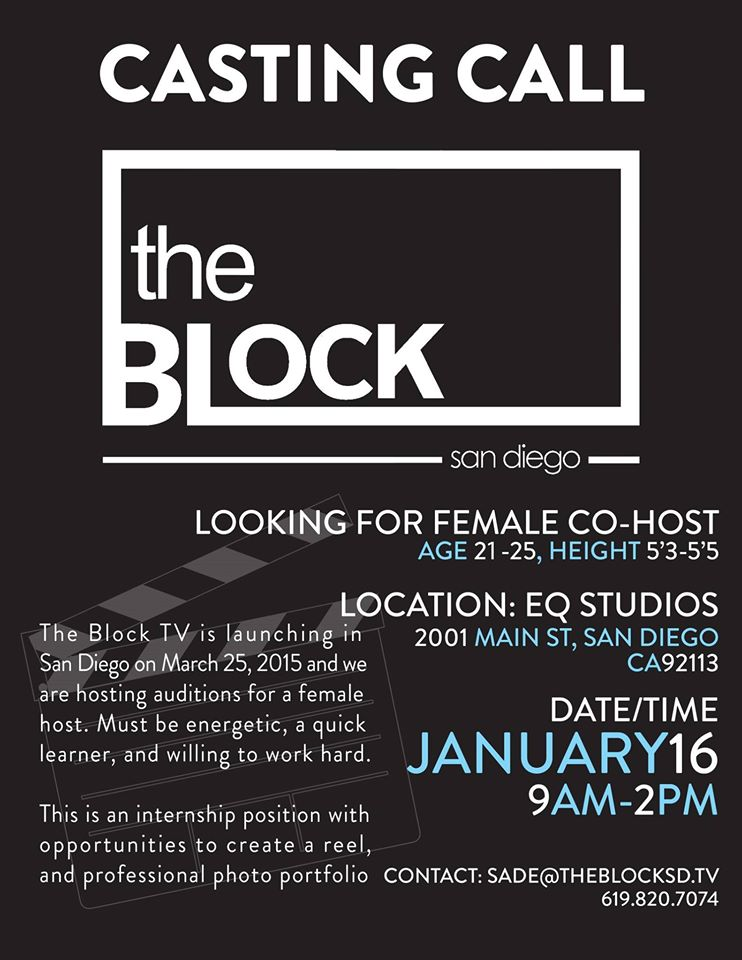 the block sd tv audition