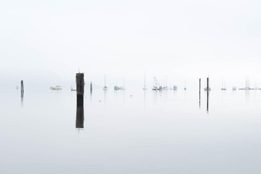 Cowichan Bay, 2015