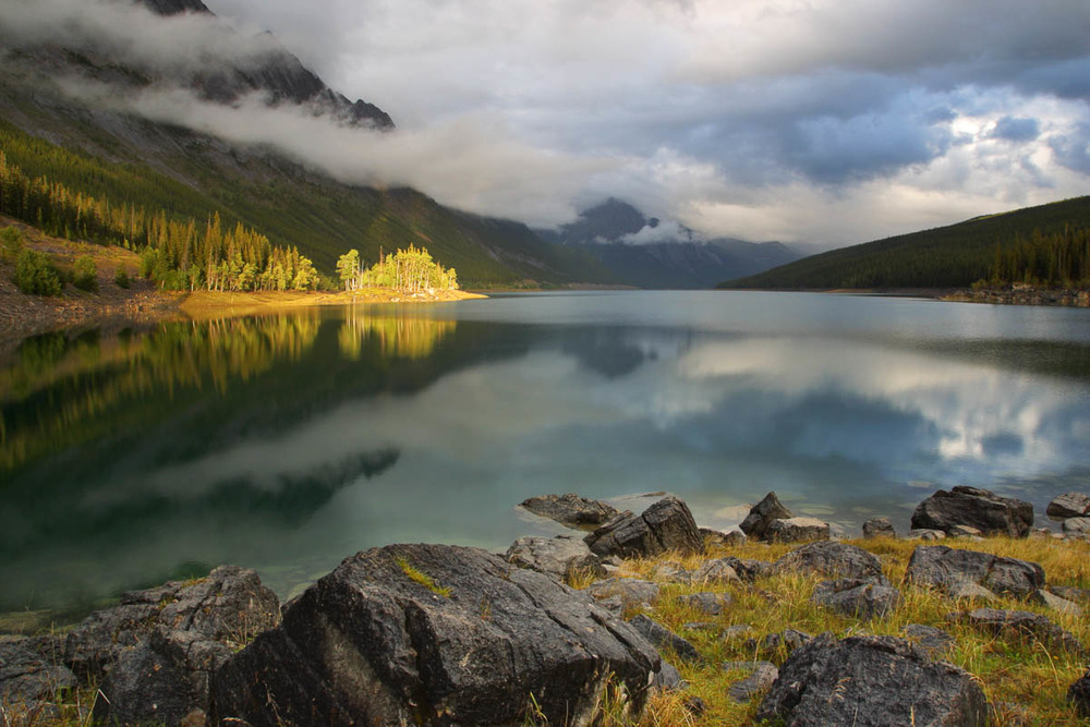 Sunlit Trees, Medicine Lake, Jasper National Park, 2002
