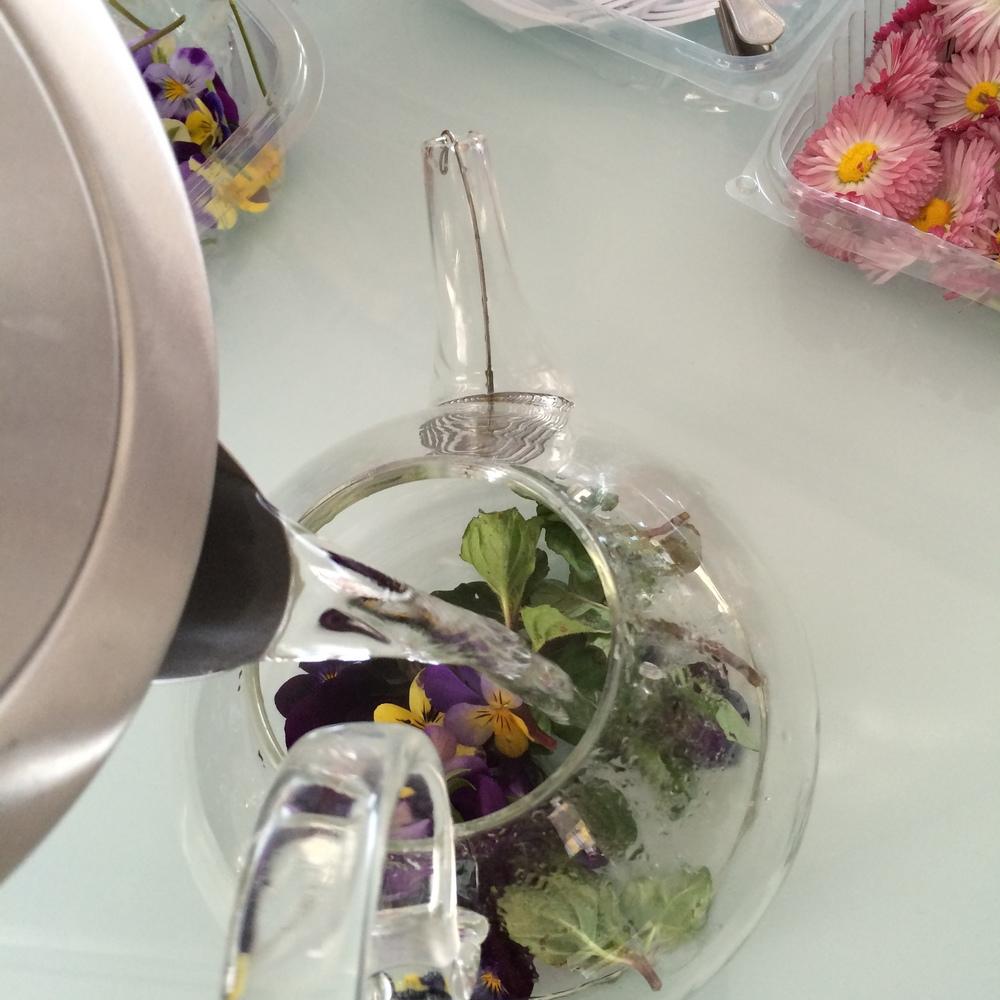 Infusões de flores que transformam a água a ferver em chá azul