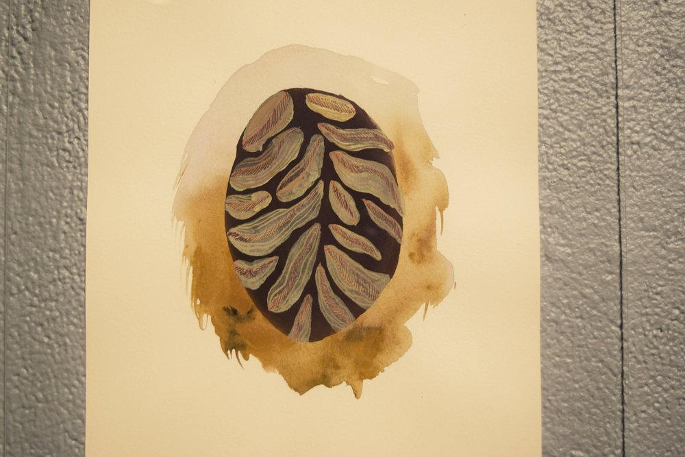 durian cell.jpg