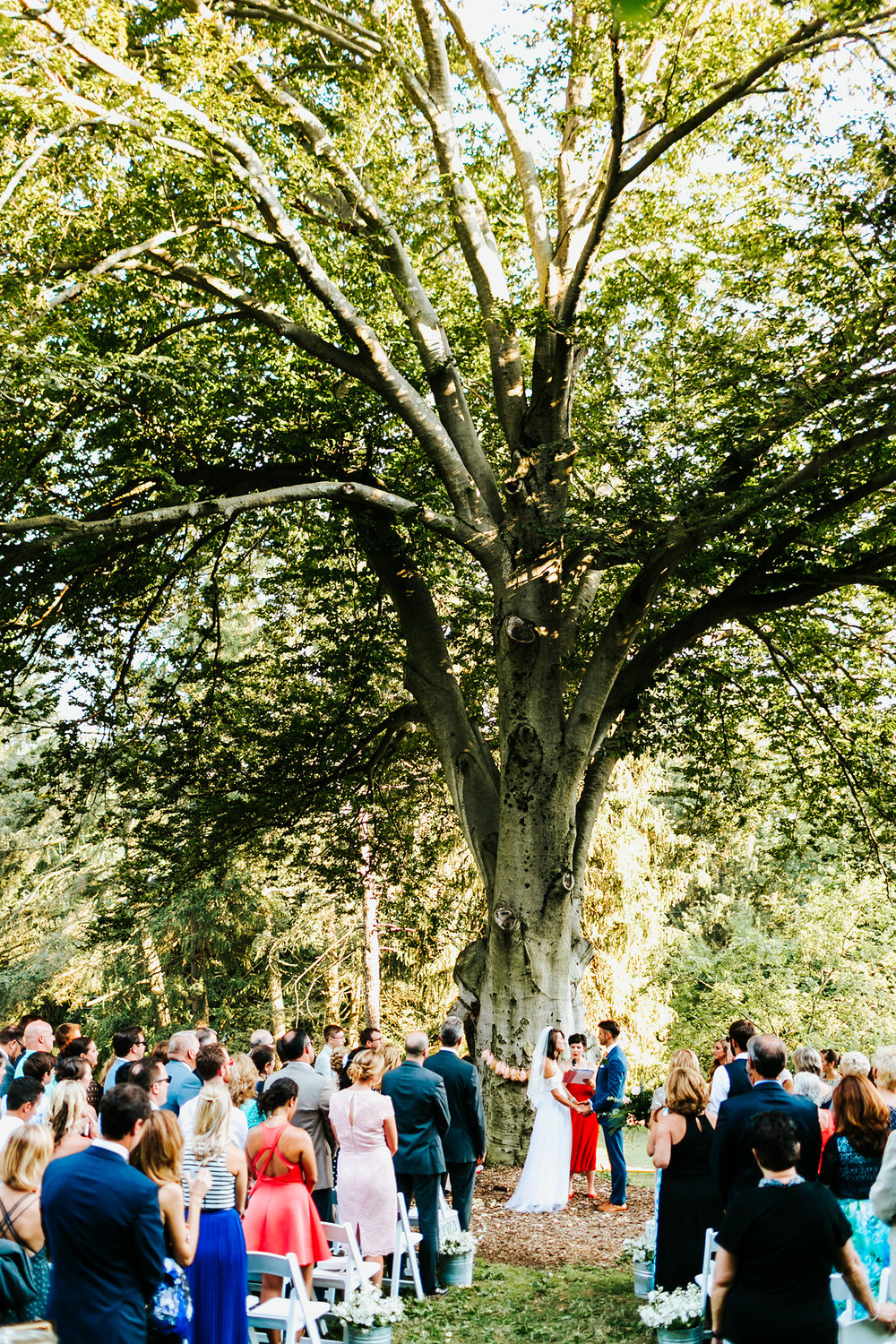 Philadelphia Wedding Planner Heart & Dash | Historic Yellow Springs DIY Wedding | Intimate Ceremony under a tree (Photo by Danfredo Photos + Films)