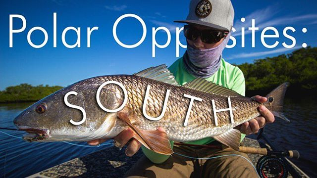 We're still around. This video has been a few years in the making. Link in bio! Check it out!  Special thanks to @patrick_rhea for showing us what's up down south. We appreciate it. Part two of polar opposites now live! #flyfishing #redfish #florida #snook