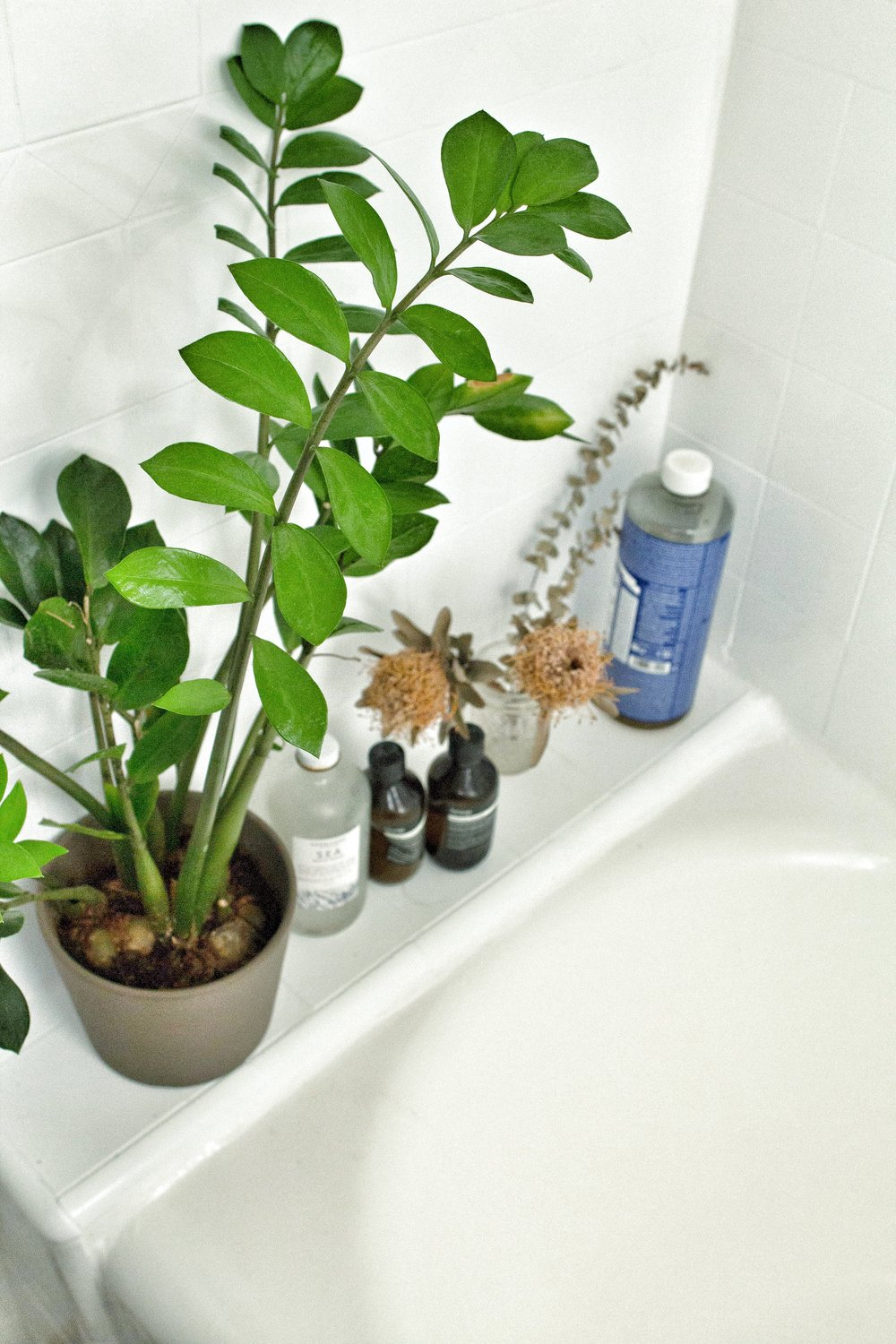 my bathtub ledge. I put all my plants and soaps here. Gotta love that big container of Dr. Bronner's!