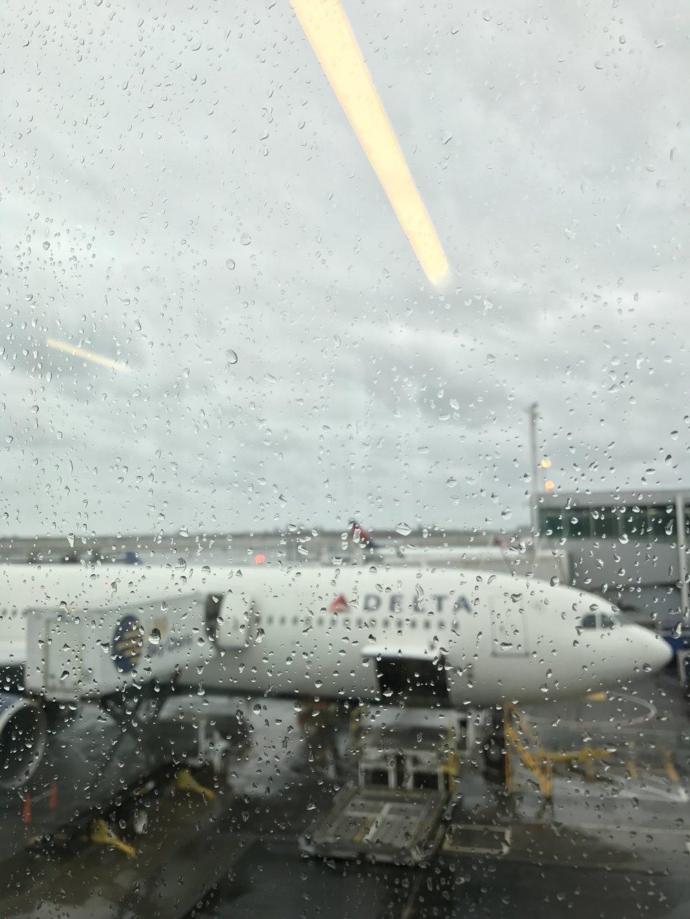 Rain, I missed you!