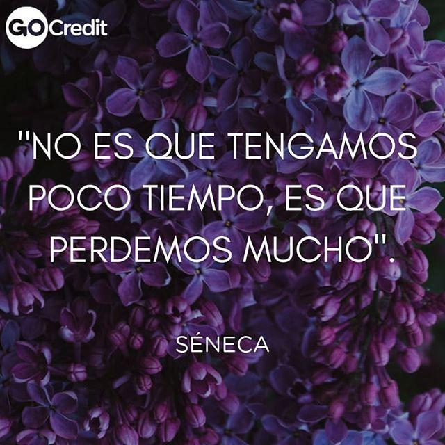 Frase de ombligo de semana! #GoCredit #vacontigo ... #préstamosrápidos #prestamos #créditos #jubiladosypensionados #jubilados #pensión #imss #issste #pemex #dinerorápido #dinero #isesalud #cespt