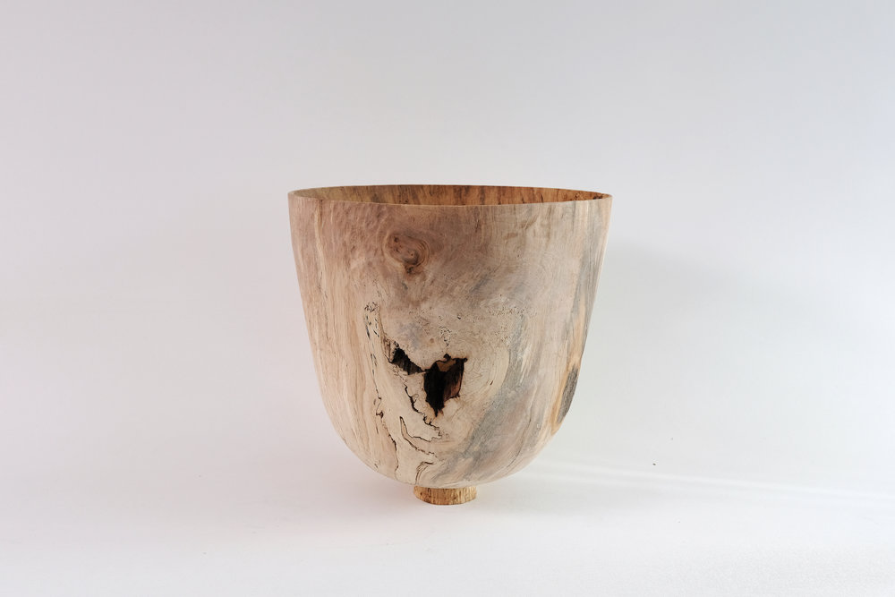 Spalted Horse Chestnut . 2017