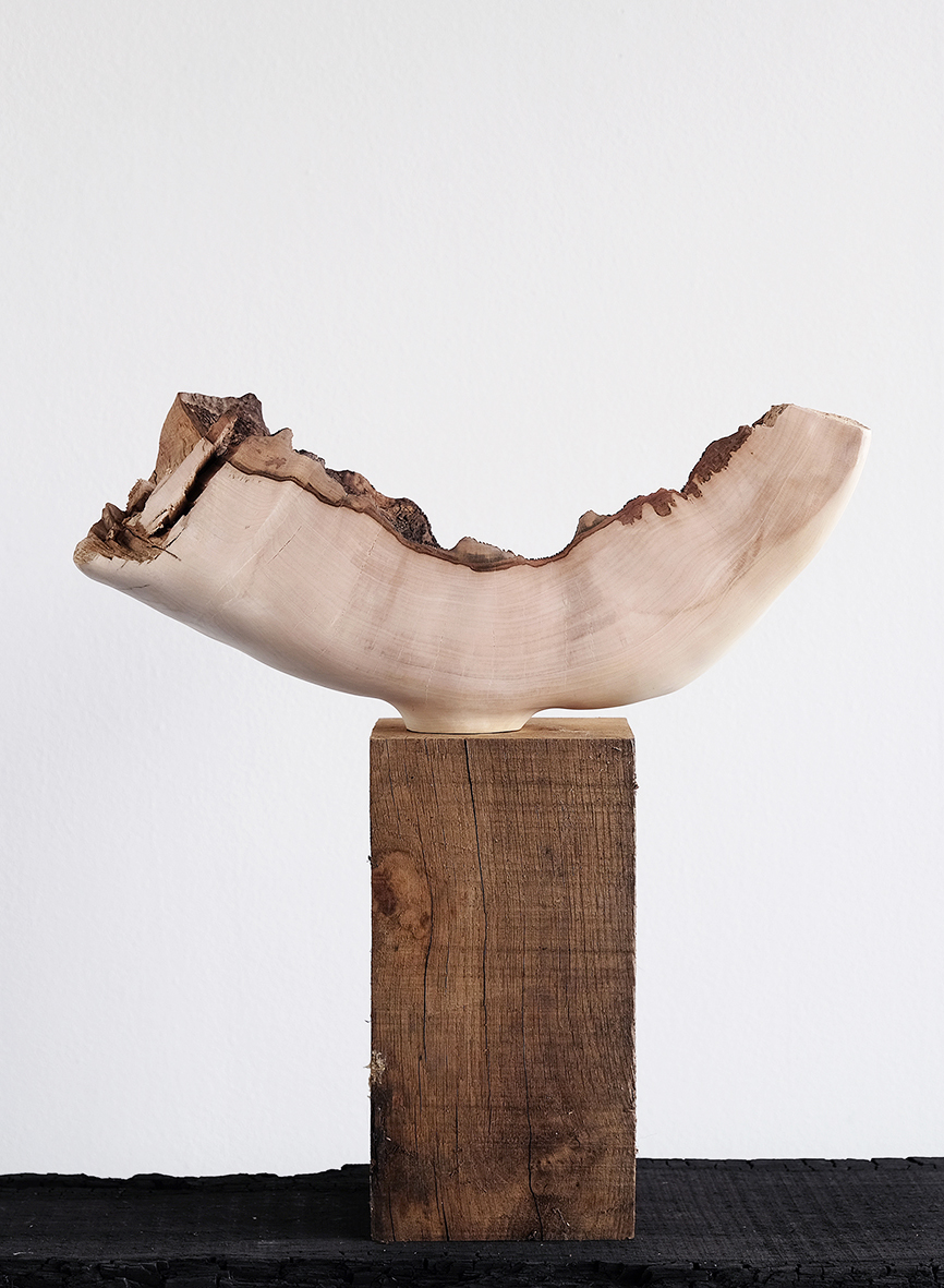 Swept Sycamore | carved sycamore wood, 2017
