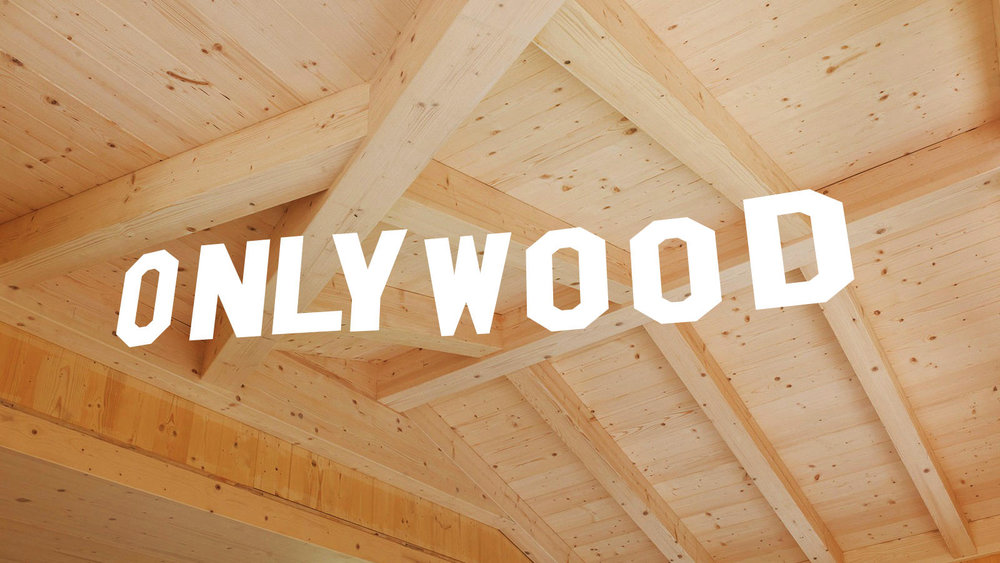drzm-hasslacher-nordic-timber-plafondbalken-onlywood.jpg